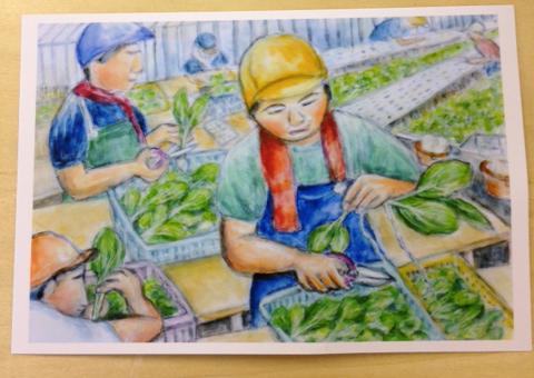 農場の仕事は楽しくて